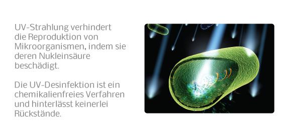 Wirkungs Prinzip der UV-Desinfektion